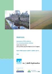 Peat CO2.pdf - Wetlands International Indonesia Programme
