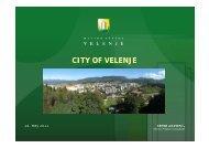 Municipality of Velenje - ReNewTown