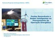 Maria Elvira Maceira - PPE - Programa de Planejamento Energético