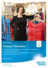 Energy in Business (Spring 2012) - Electric Ireland
