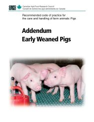 Early Weaned Pigs - Carc-Crac.ca