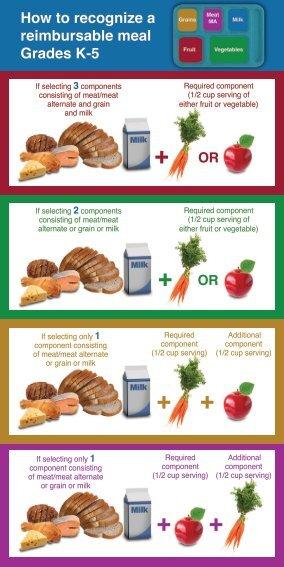 Offer vs Serve School Meal Pattern Handout