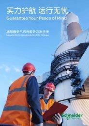 施耐德电气咨询服务方案手册(pdf,1.82mb) - Schneider Electric