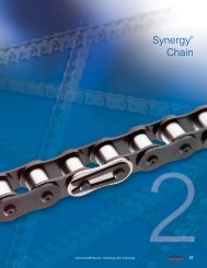 Synergy® Chain