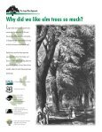 The Large Tree Argument - USDA Forest Service - Page 2