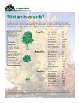 The Large Tree Argument - USDA Forest Service - Page 6