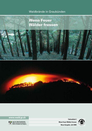 Wenn Feuer Wälder Fressen (pdf, 500 KB) - Kanton Graubünden