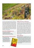 Wenn Feuer Wälder Fressen (pdf, 500 KB) - Kanton Graubünden - Seite 2