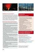 Wenn Feuer Wälder Fressen (pdf, 500 KB) - Kanton Graubünden - Seite 4