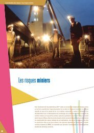 Perspectives 2008 : les risques miniers