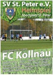 SVS-Heimspiel 2014/15-06