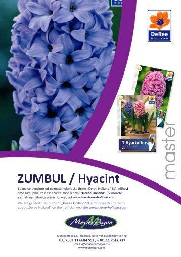 Zumbuli - Monte Agro