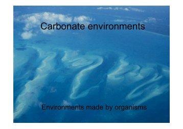 06 Carbonates.pdf