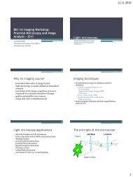 Light microscopy - Biomedicum Imaging Unit (BIU)