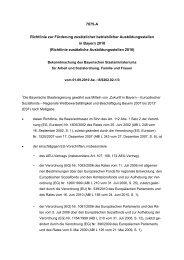 Richtlinie zusätzliche Ausbil - Bayern