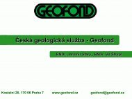 CGS-Geofond - profil organizce CZ (2009) - Česká geologická služba