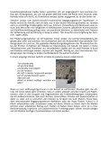 Friedenspilgerfahrt nach Israel und Palästina - Internationaler ... - Seite 3