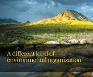 A different kind of environmental organization [PDF]
