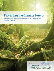 The Full Report - The Commission on Climate and Tropical Forests
