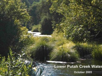 Lower Putah Creek Water