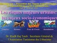 Les risques majeurs urbains: les enjeux socio ... - Euromedina