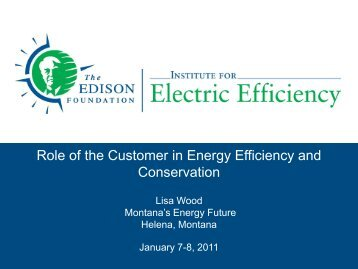 Role of the Customer in Energy Efficiency and Conservation