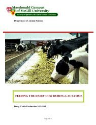 feeding the dairy cow during lactation - Oregon Small Farms