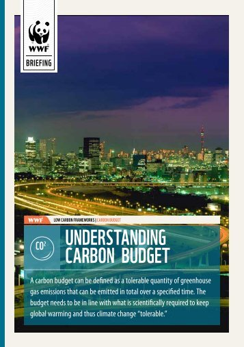 Understanding Carbon bUdget - WWF South Africa