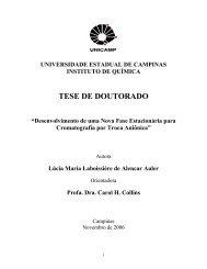 TESE DE DOUTORADO - CDTN