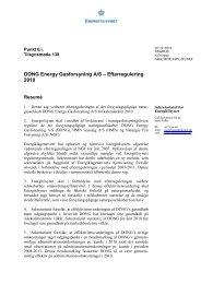 DONG - 2010 - Energitilsynet