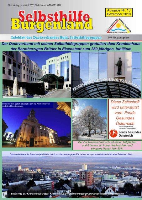 Ausgabe Nr. 13 - Dachverband Burgenländischer Selbsthilfegruppen