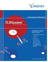 Immunology & Inflammation