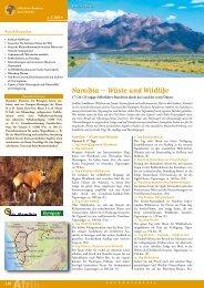 Namibia – Wüste und Wildlife
