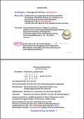 Seminar 3 - Kabel (ca. 3,4 MB) - HAAG Elektronische Messgeräte ... - Seite 3