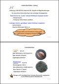 Seminar 3 - Kabel (ca. 3,4 MB) - HAAG Elektronische Messgeräte ... - Seite 7