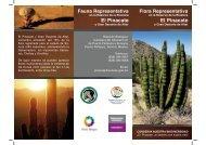 Triptico FLORA.indd - Reserva de la Biosfera El Pinacate y Gran ...