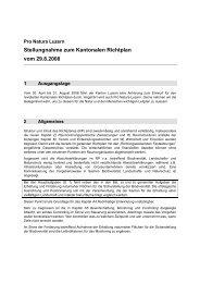 Stellungnahme zum Kantonalen Richtplan vom 29.8.2008