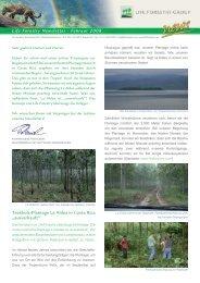 Life Forestry Newsletter - Februar 2008 Teakholz-Plantage La Aldea ...