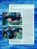 The Dark Storm-Petrels of the Eastern North Pacific - American ... - Page 5