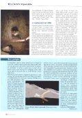"""grotta """"Impossibile"""" - Catasto Storico delle Grotte della Commissione ... - Page 5"""