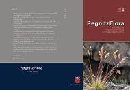 RegnitzFlora - Botanischer Informationsknoten Bayern