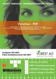 Auditplan ISO 9001 - Vorest AG