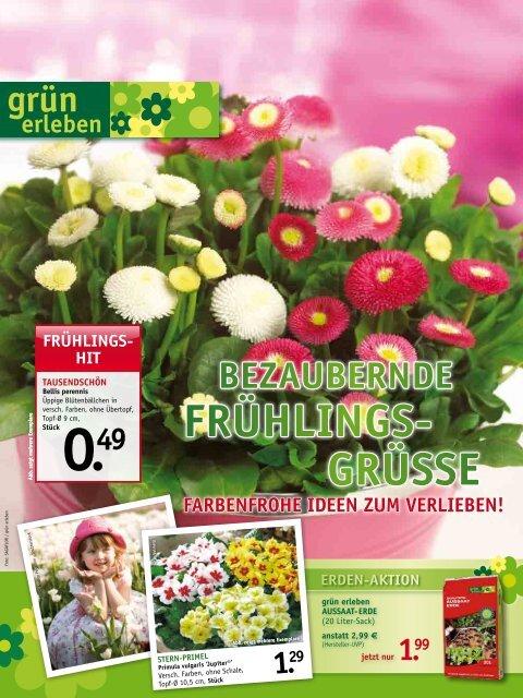 Frühlings- grüsse - Gartencenter Odenwald