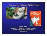 presentation, part 1 - Molecular Evolution