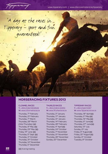 Equestrian activities and Greyhound racing - Tipperary