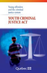 Young offenders and the criminal justice system - Gouvernement du ...