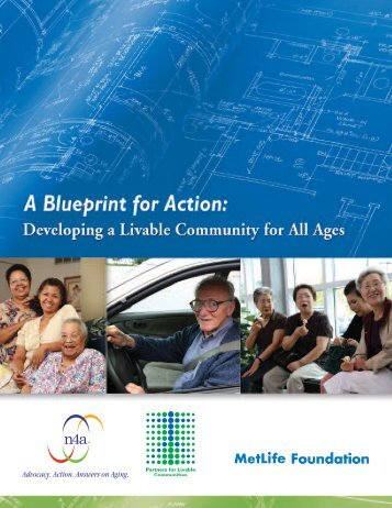A Blueprint for Action - n4a