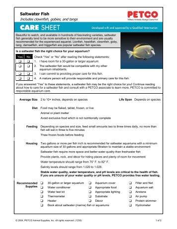 Fantail goldfish petco for Petco saltwater fish