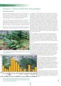Douglasie – Chancen und Risiken Forstliche ... - Waldwissen.net - Seite 2