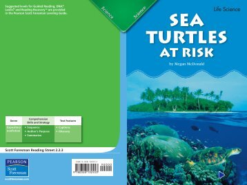 Sea Turtles At Risk